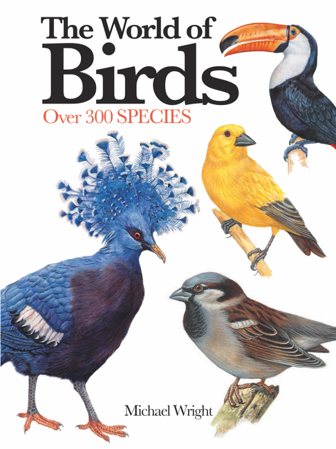 The World of Birds: Mini Encyclopedia