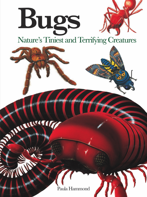 Bugs and Mini Monsters: Mini Encyclopedia