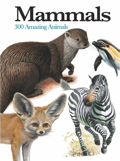 Mammals: Mini Encyclopedia