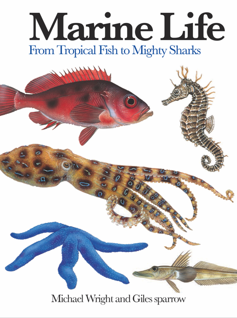 Marine Life: Mini Encyclopedia