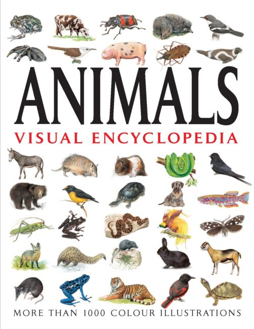 Animals Visual Encyclopedia
