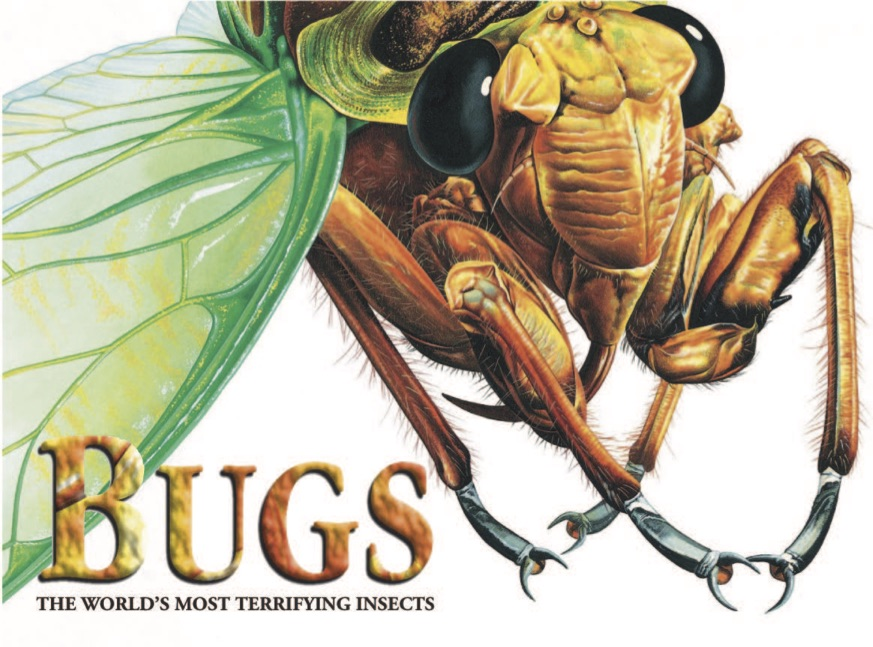 Bugs: The World's Most Terrifying Insects