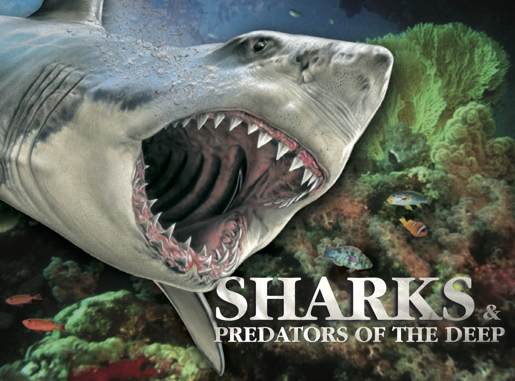 Sharks & Predators of the Deep