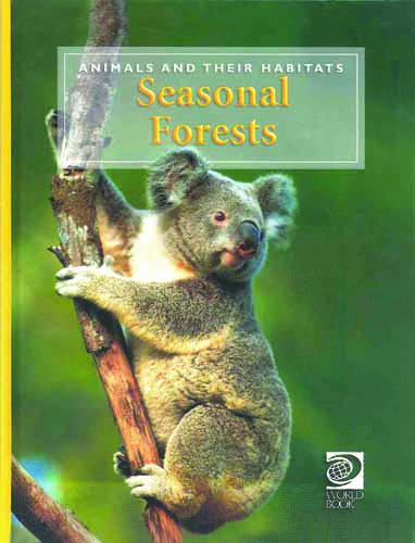 Discovering Animals: Seasonal Forests