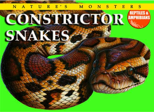 Nature's Monsters: Constrictor Snakes