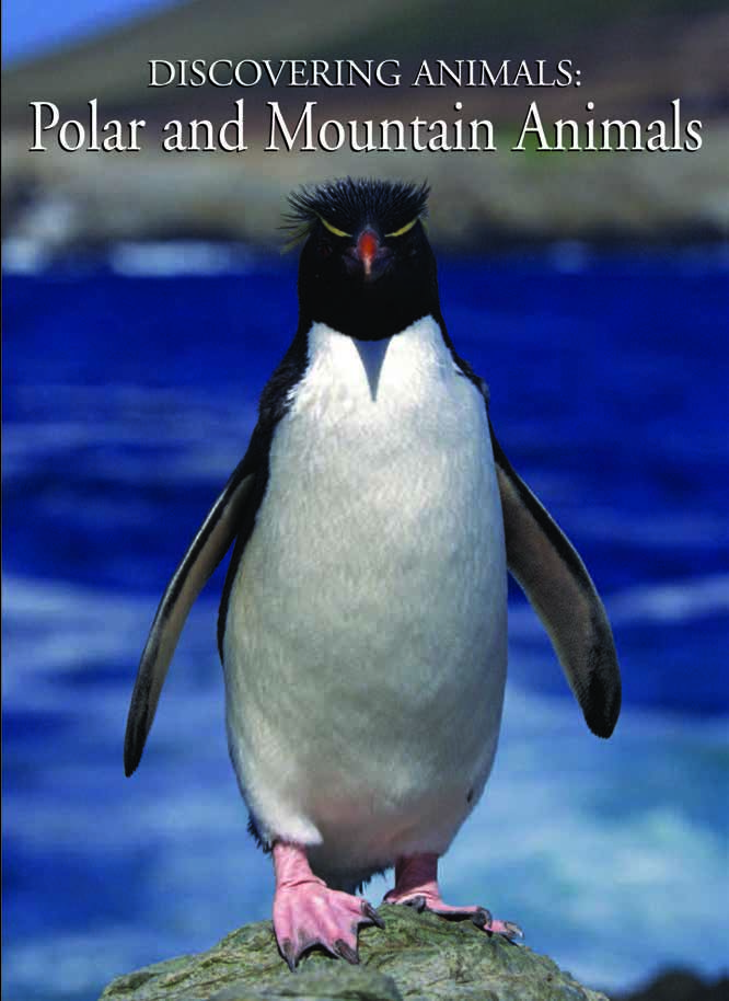 Discovering Animals: Mountain and Polar Regions