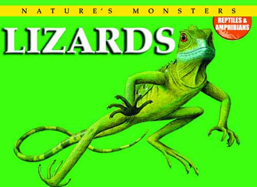 Nature's Monsters: Lizards
