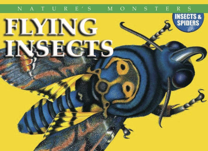 Nature's Monsters: Flying Insects
