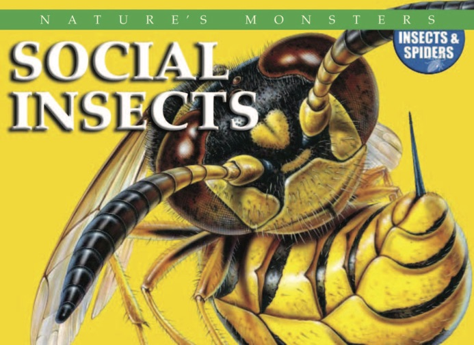 Nature's Monsters: Social Insects