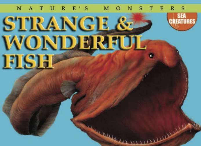 Nature's Monsters: Strange and Wonderful Fish