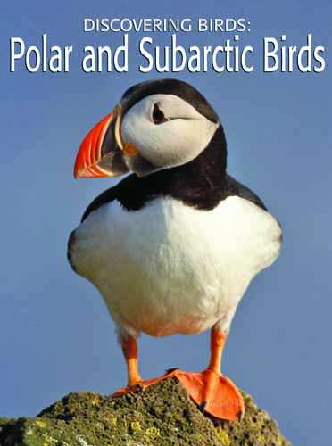 Discovering Birds: Polar and Subarctic Birds