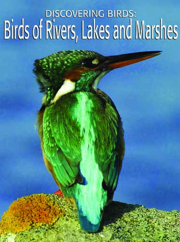 Discovering Birds: Birds of Rivers, Lakes and Marshes