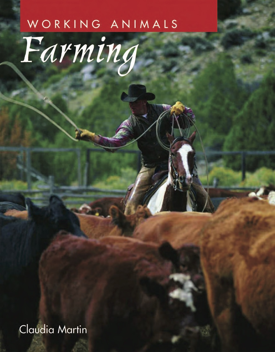 Working Animals: Farming