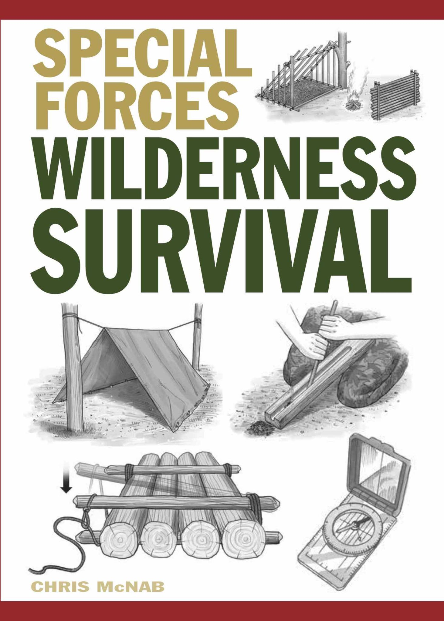 surviving in the wilderness book cover