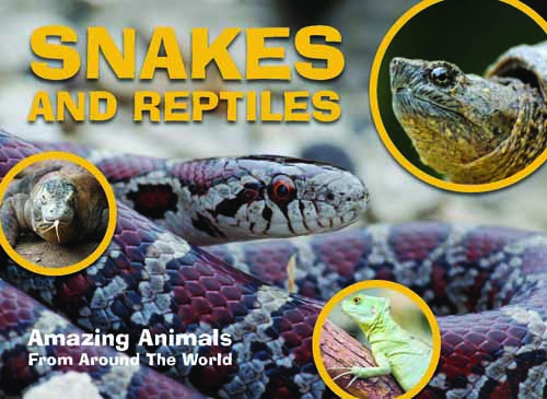 Amazing Animals: Snakes and Reptiles